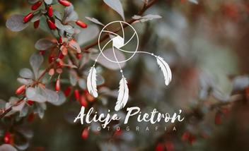Alicja Pietroń Fotografia