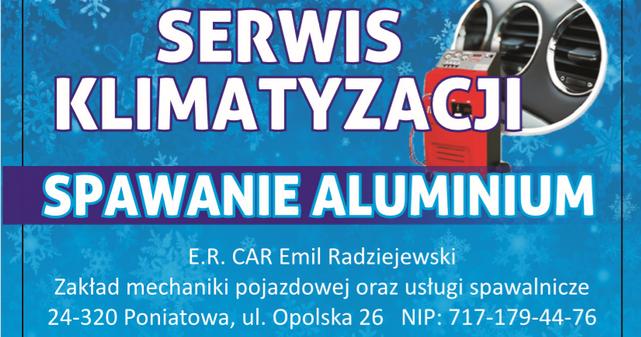 Mechanika Pojazdowa Emil Radziejewski - obrazek 2